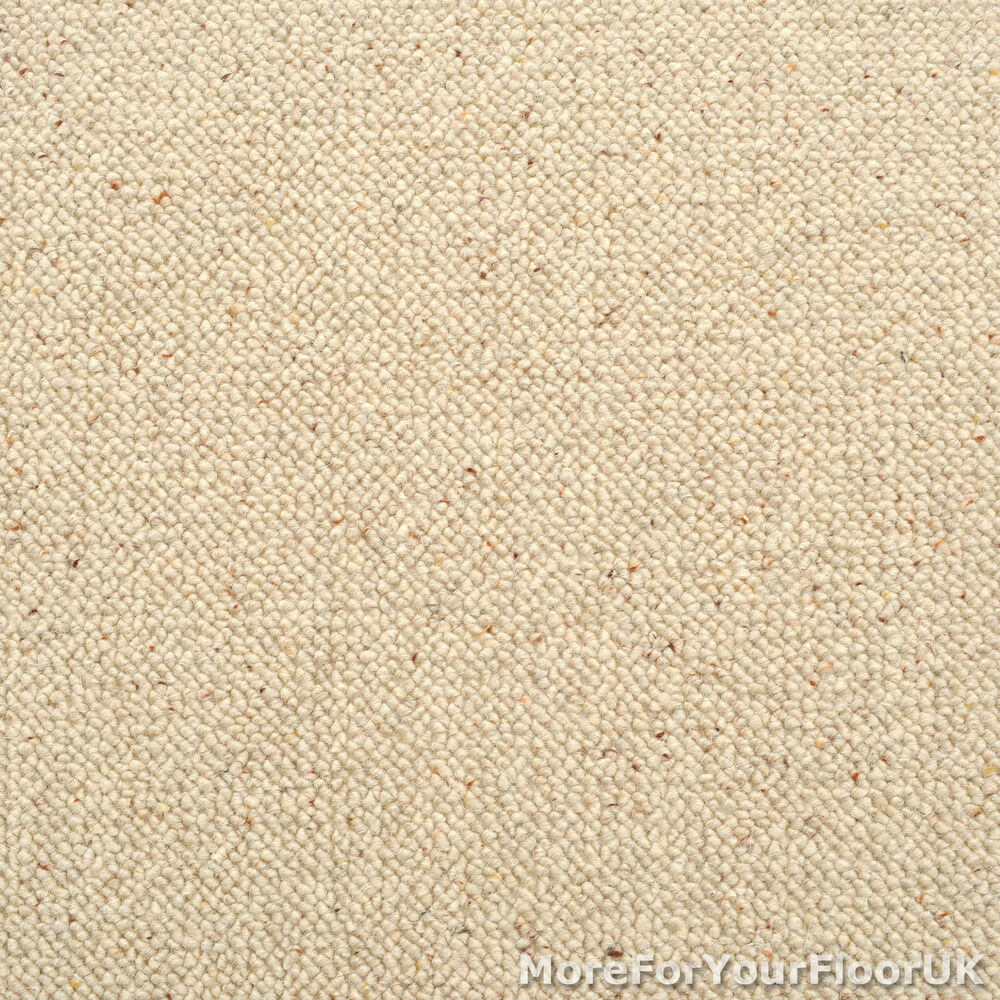 100% Wool Berber Carpet - Cream / Beige - Quality Loop  eBay