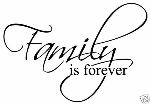 family is forever vinyl sticker decal wall quote decor ebay. Black Bedroom Furniture Sets. Home Design Ideas
