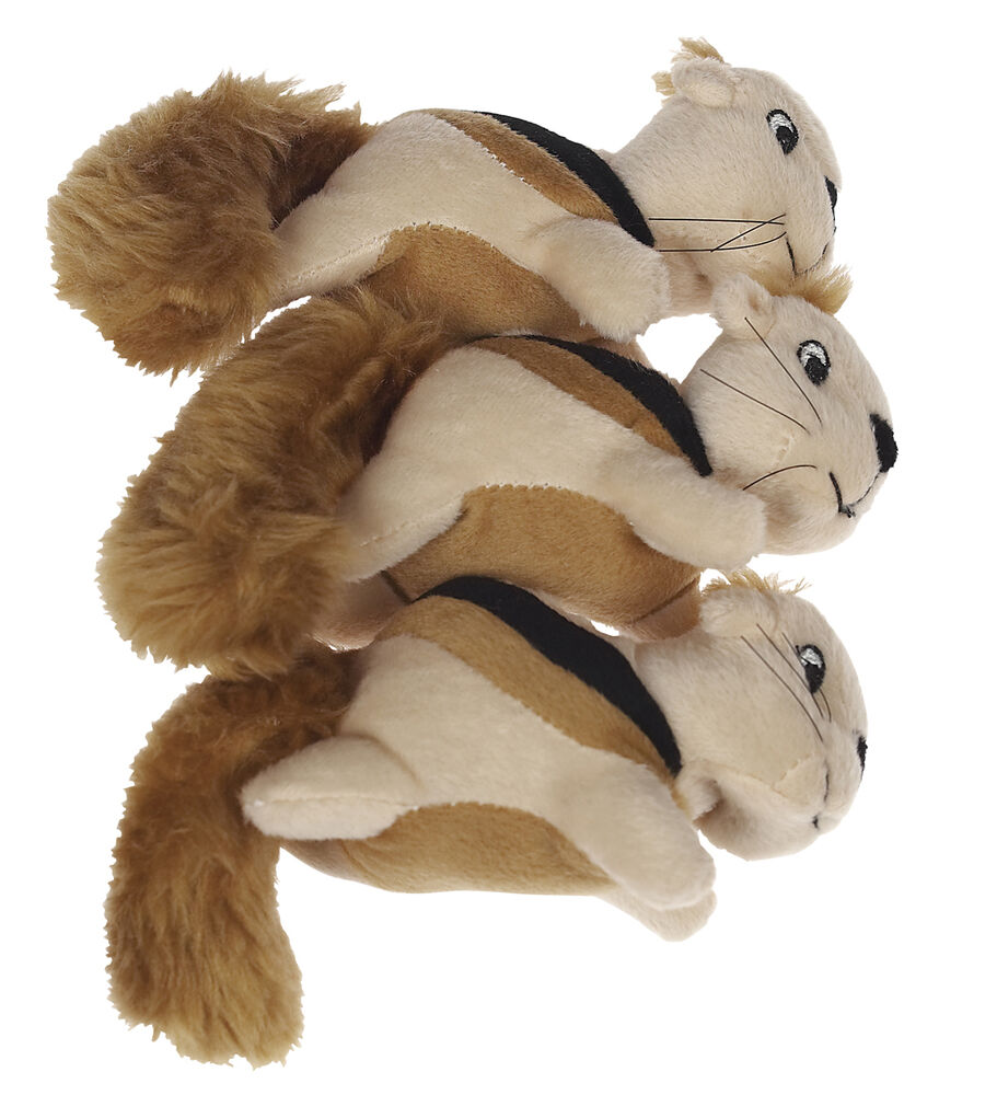 Squirrell Dog Toy