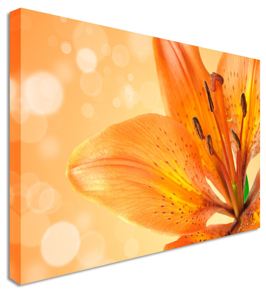 Large Lily Orange Petals Floral Flower Canvas Wall Art