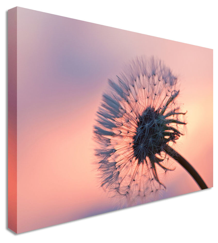 Large Make A Wish Dandelion Flower Canvas Wall Art