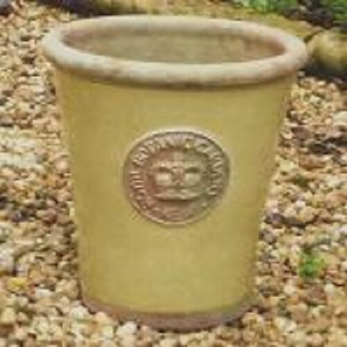 Royal Botanical Gardens Kew Grape Green Ceramic Pots eBay