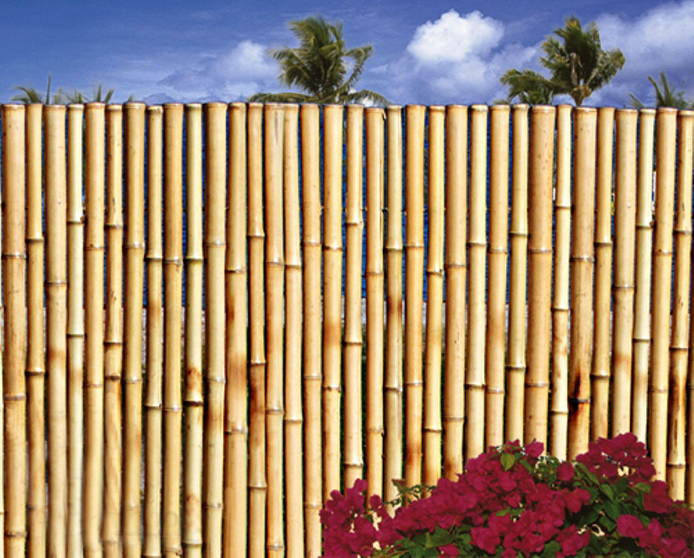 bamboo fence 1 dia 8 ft sections commercial grade natural. Black Bedroom Furniture Sets. Home Design Ideas