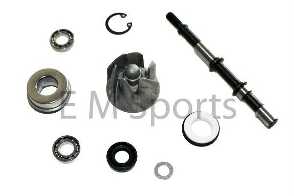 Chinese go kart buggy 250cc 300cc water pump kit engine for Water pump motor parts