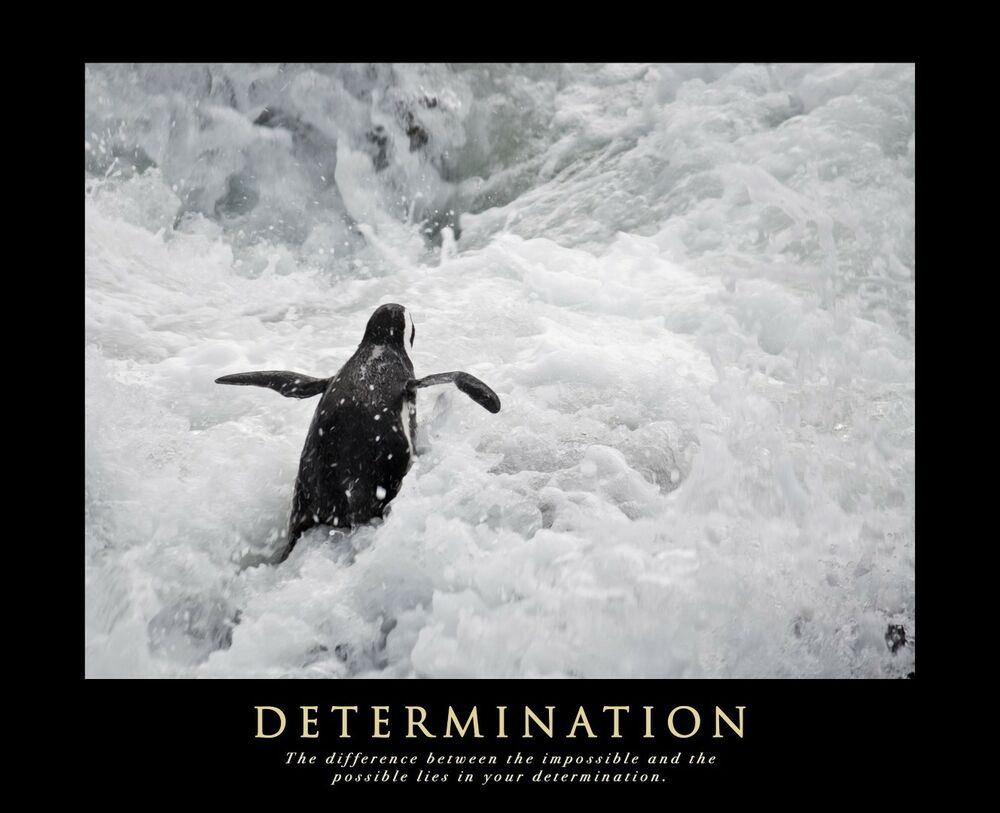 the determination of the size of 2008-11-13 a review of sample size determination in comparative studies by mk habib,l km magruder-habib2, and ll kupper1 department of biostatistics1 the university of north carolina at chapel hill.