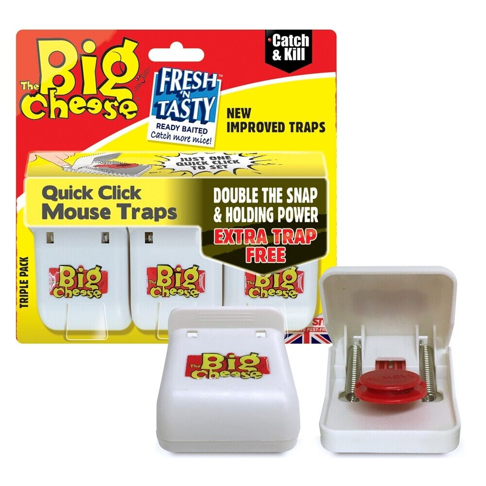 the big cheese of mouse traps a Trap-ease america: the big cheese of mousetraps company mission increased interest sales the goals of the company if a man [can]    make a better mousetrap than his neighbor    the world will make a beaten path to his door a group of investors in order to market the innovative mouse trap.