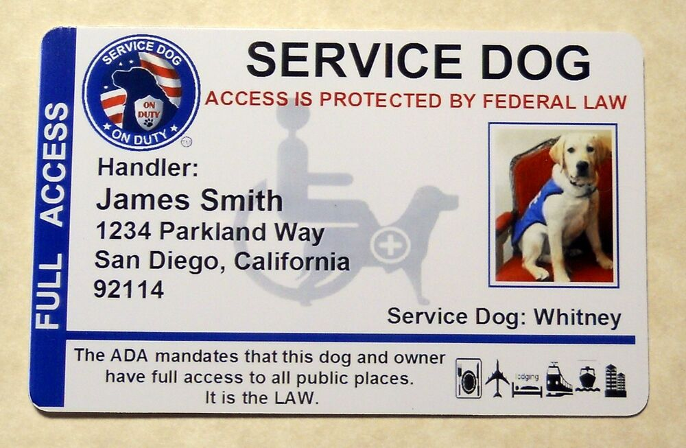 HOLOGRAPHIC SERVICE DOG VEST ID BADGE CARD SERVICE ANIMAL ID WORKING ...