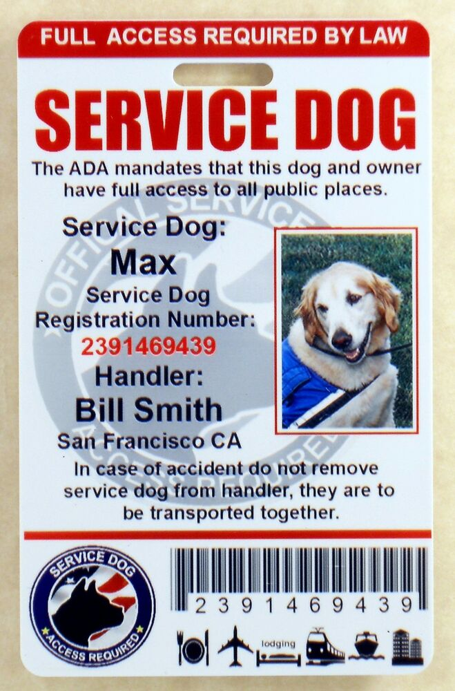 Holographic Service Dog Id Card Badge Assistance Animal