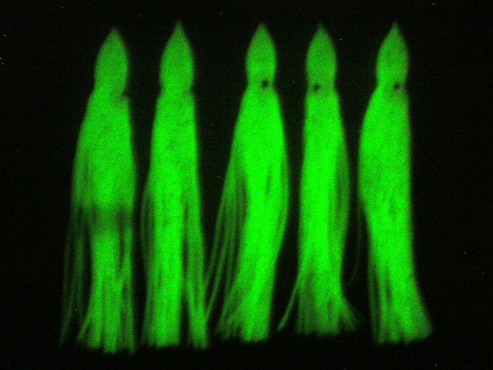10pcs 150mm luminous octopus squid skirts soft lure jig for Glow in the dark fishing lures