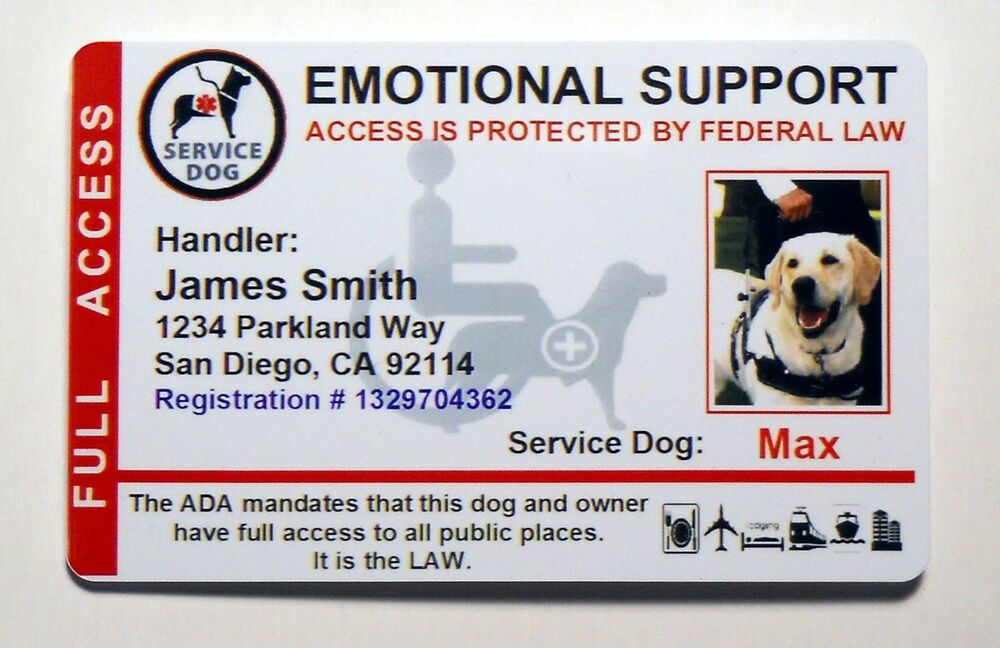 Service Dog Tags Emotional Support