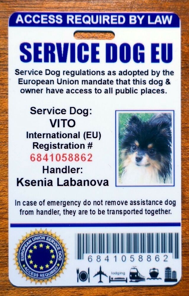 european union assistance dog id badge service dog id card europe ...