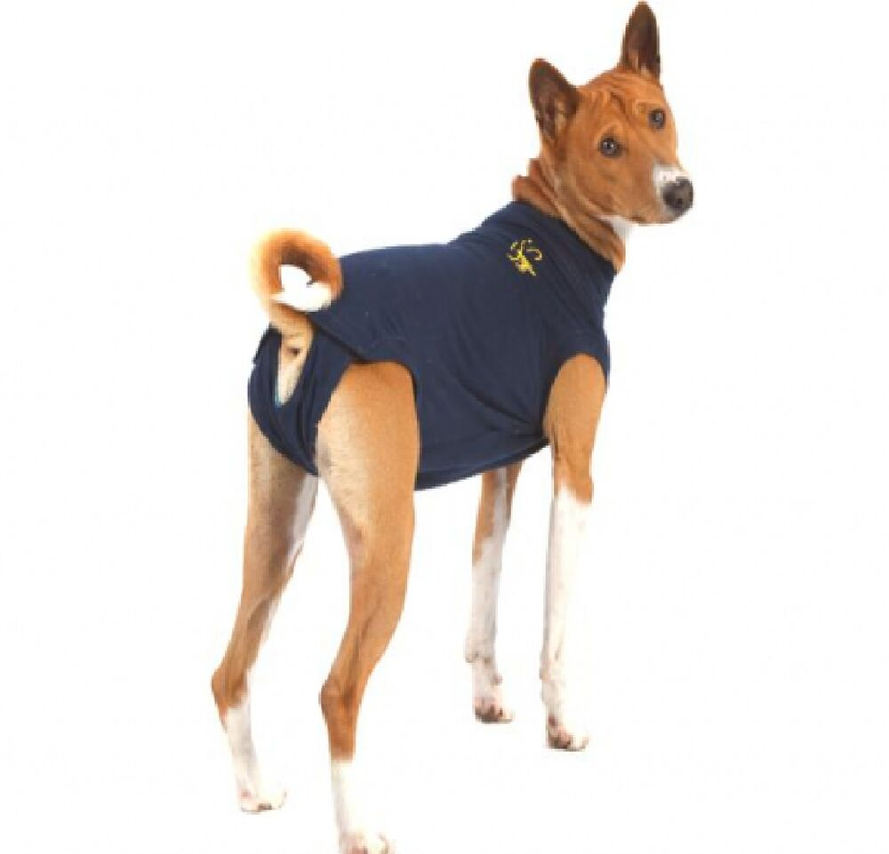 medical pet shirt dog alternative to vet collar stops