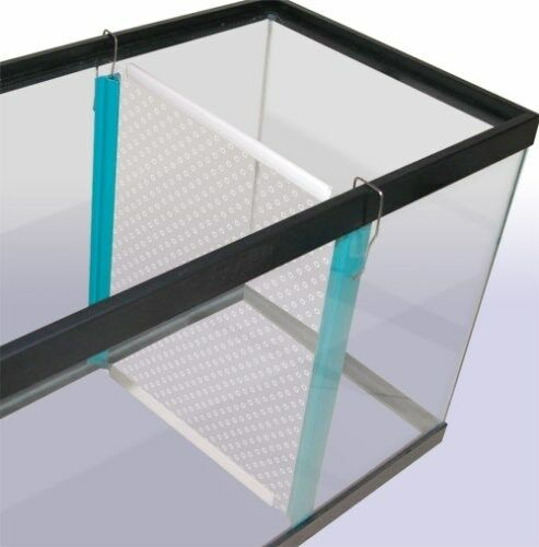 Tank divider 15 or 20 gallon tdlbx penn plax ebay for Fish tank divider