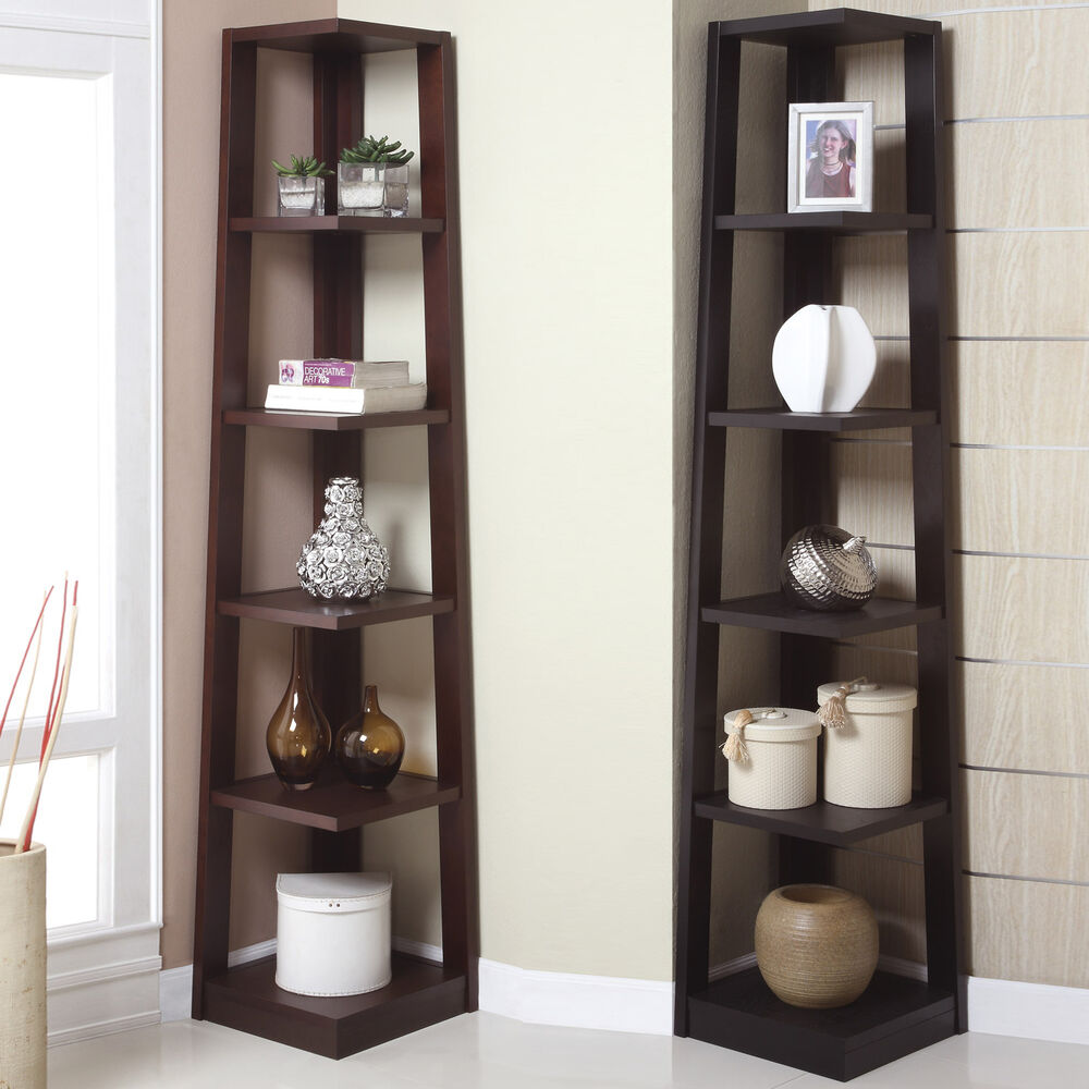 Contemporary Walnut Cappuccino Wooden Storage Display