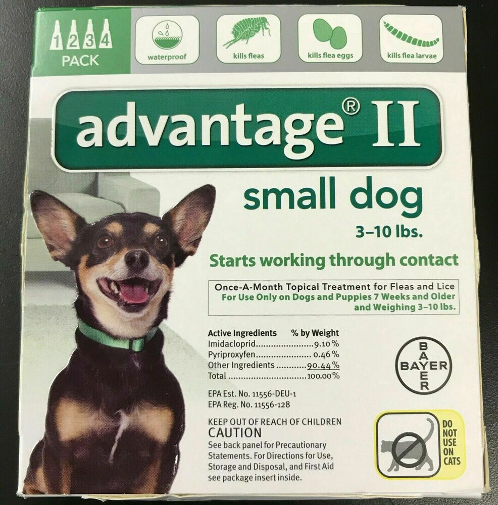 Where Can I Buy Advantage For Dogs
