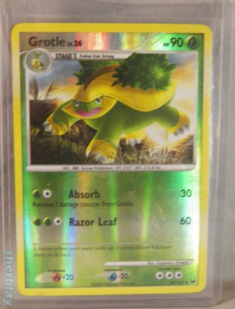 Pokemon Card Tcg Grotle Lv 26 Hp 90 49127 Holo In Hard Sleeve Ebay