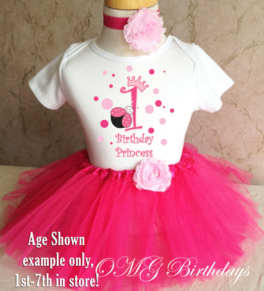 Pink Princess Ladybug Crown 1st First Birthday Tutu Outfit
