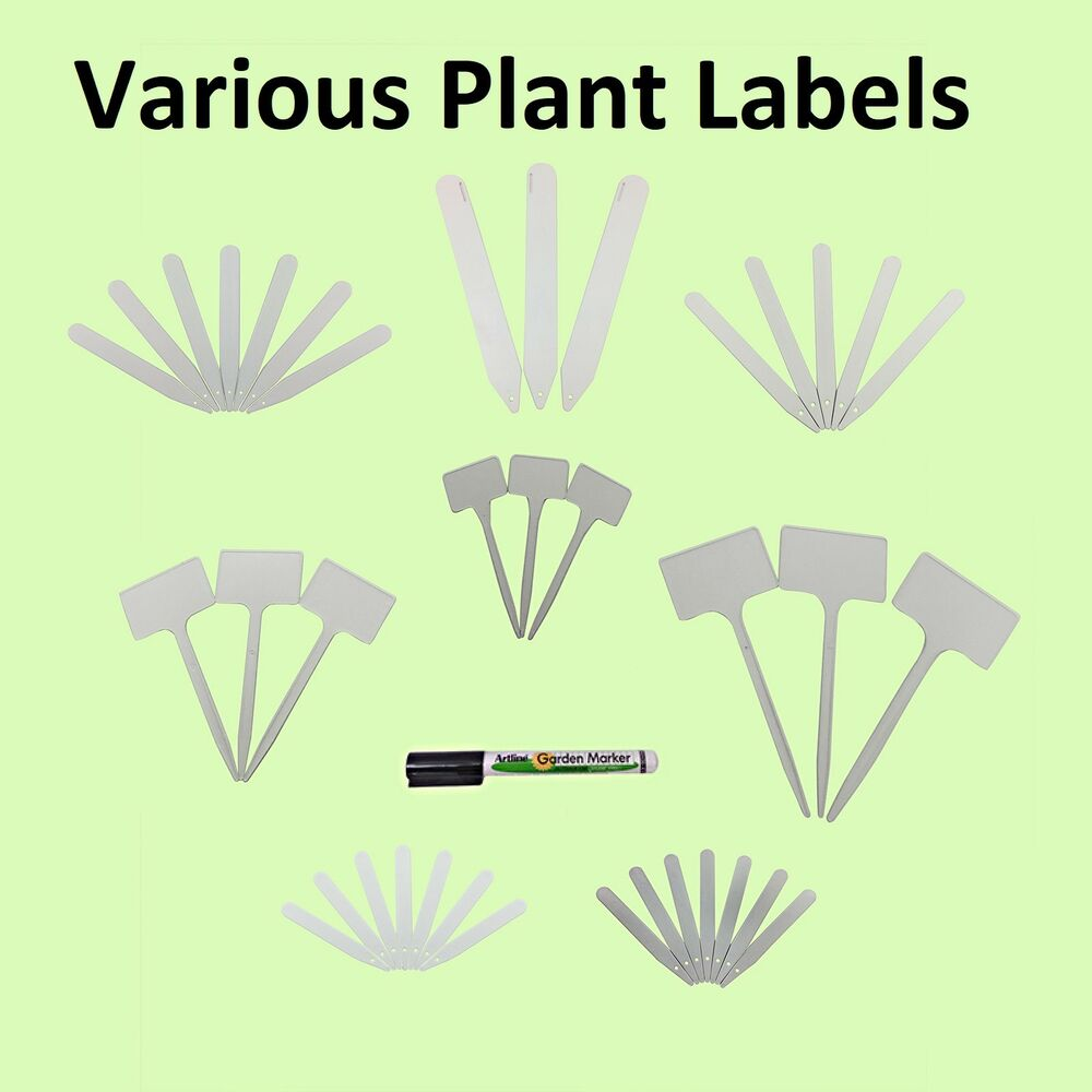 4 5 6 8 12 White Plant Stick Garden Tee Labels Seed