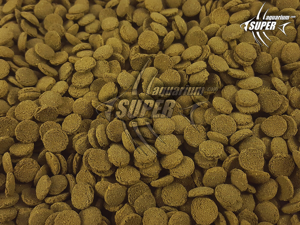 Aquarium sinking wafers spirulina algae fish food bottom for Bottom feeder fish list