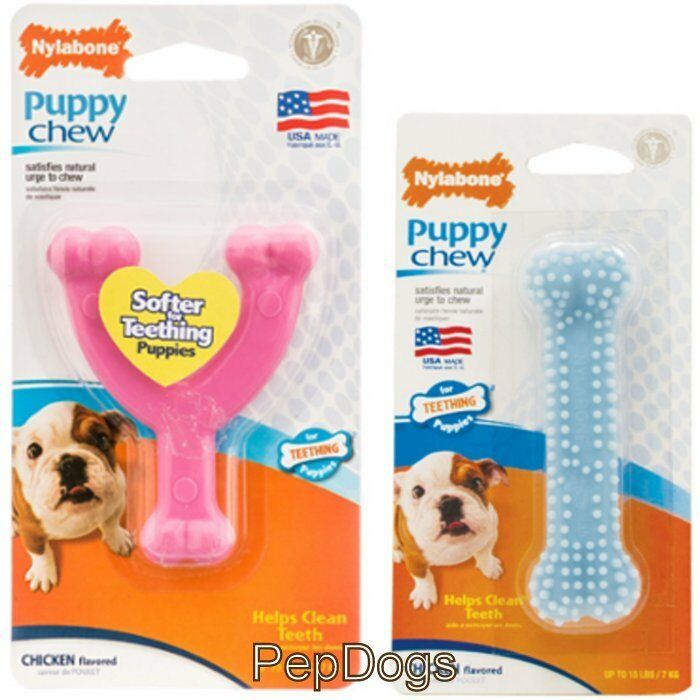 Nylabone Puppy Chew Chicken Flavored Teething Puppies Dog