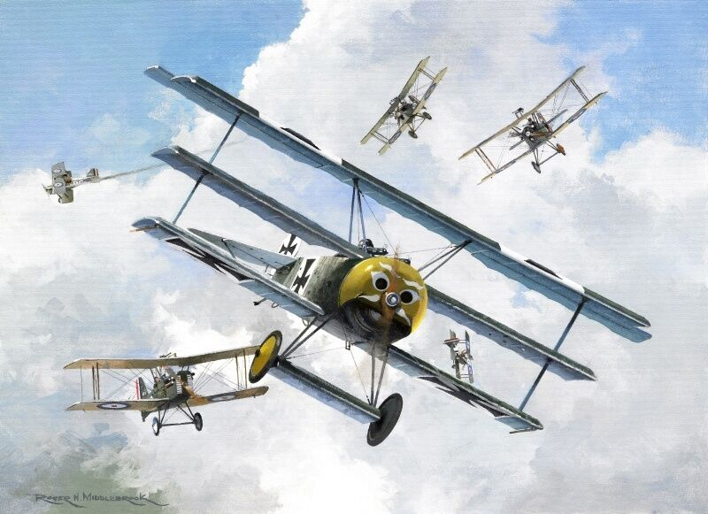 fokker dr i triplane werner voss wwi plane aviation aircraft painting art print ebay. Black Bedroom Furniture Sets. Home Design Ideas