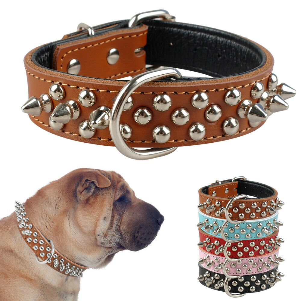 Heavy The Best Dog Collars