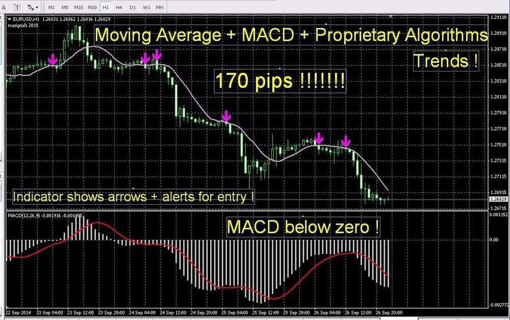Best free forex indicator 2013