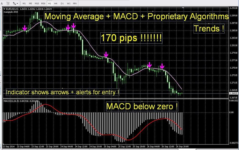 * Most Accurate Forex INDICATOR Signals best Proprietary