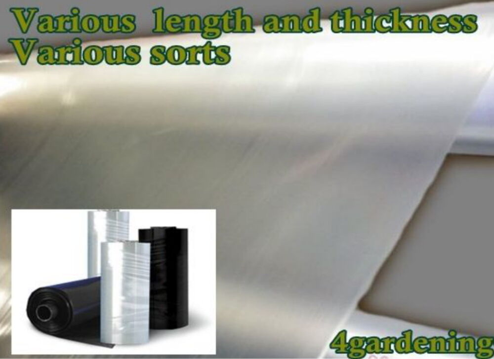 Damp Proof Membrane Thickness : Poly sheeting clear or black polythene plastic various