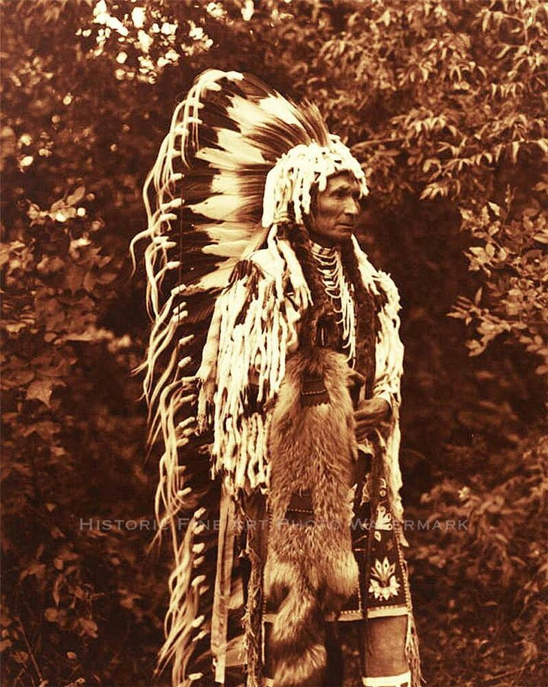 how to meet native chief