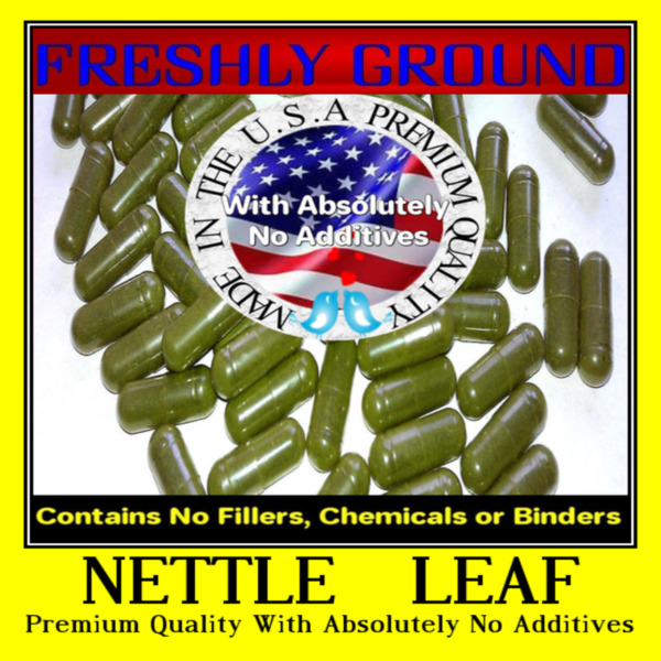 Nettle Stinging Leaf Powder THE FRESHEST IT CAN  CERTIFIED ORGANIC 100  CAPSULES