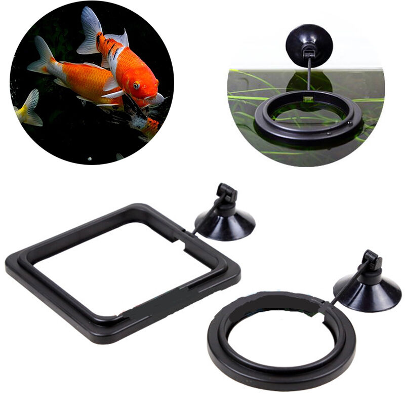 Feeding ring aquarium fish tank station floating food tary for Fish feeding ring