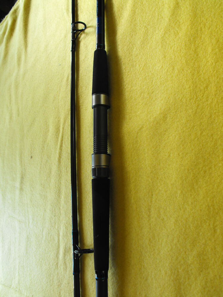 Cast Pro Series Surf Rod By Tommy Farmer13 Foot 3 6 Ounce
