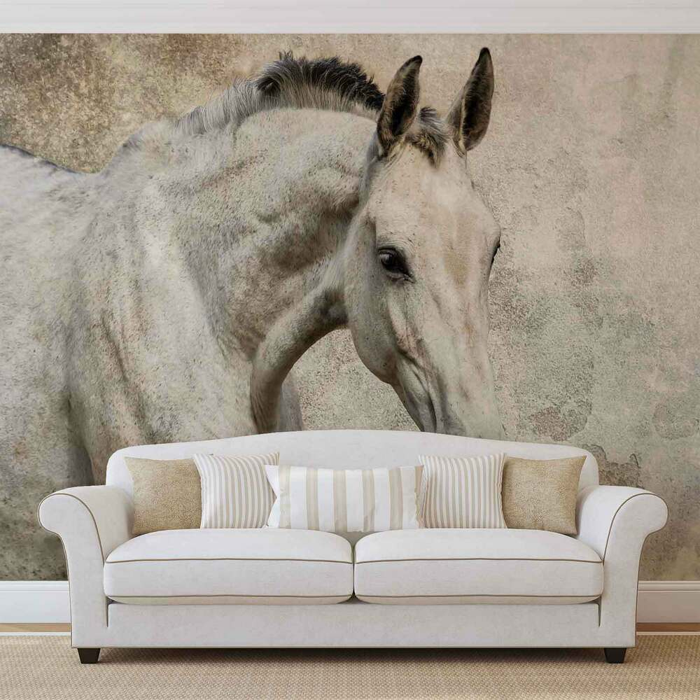 Horse pony wall mural photo wallpaper 1218dk ebay for Equestrian wall mural