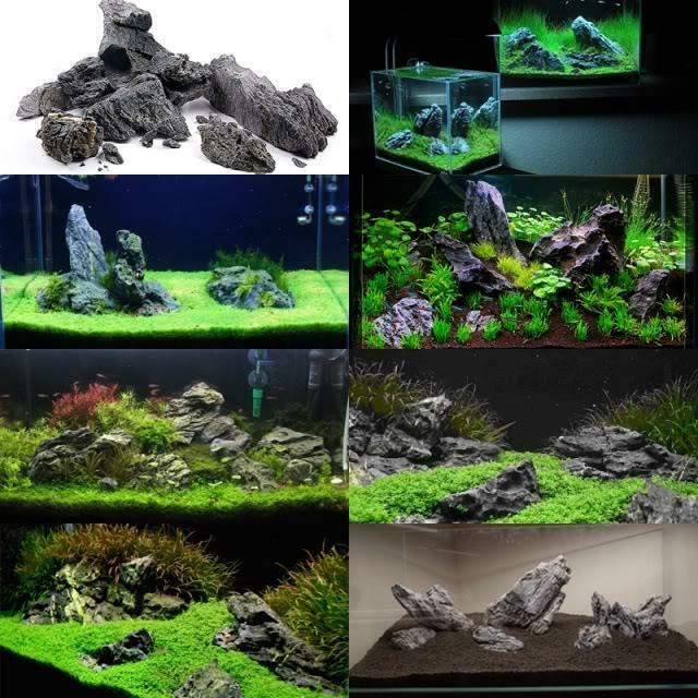 Ada seiryu stone by the lb aquarium ebay for Ada fish tank