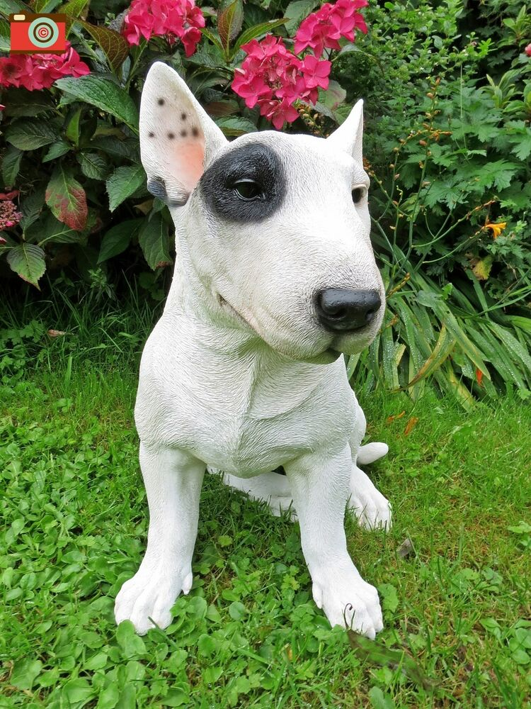 A Large English Bull Terrier For Home Amp Garden Ultra
