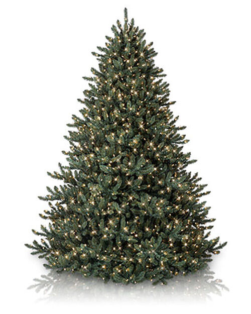 Balsam Hill Classic Blue Spruce Artificial Christmas Tree ...