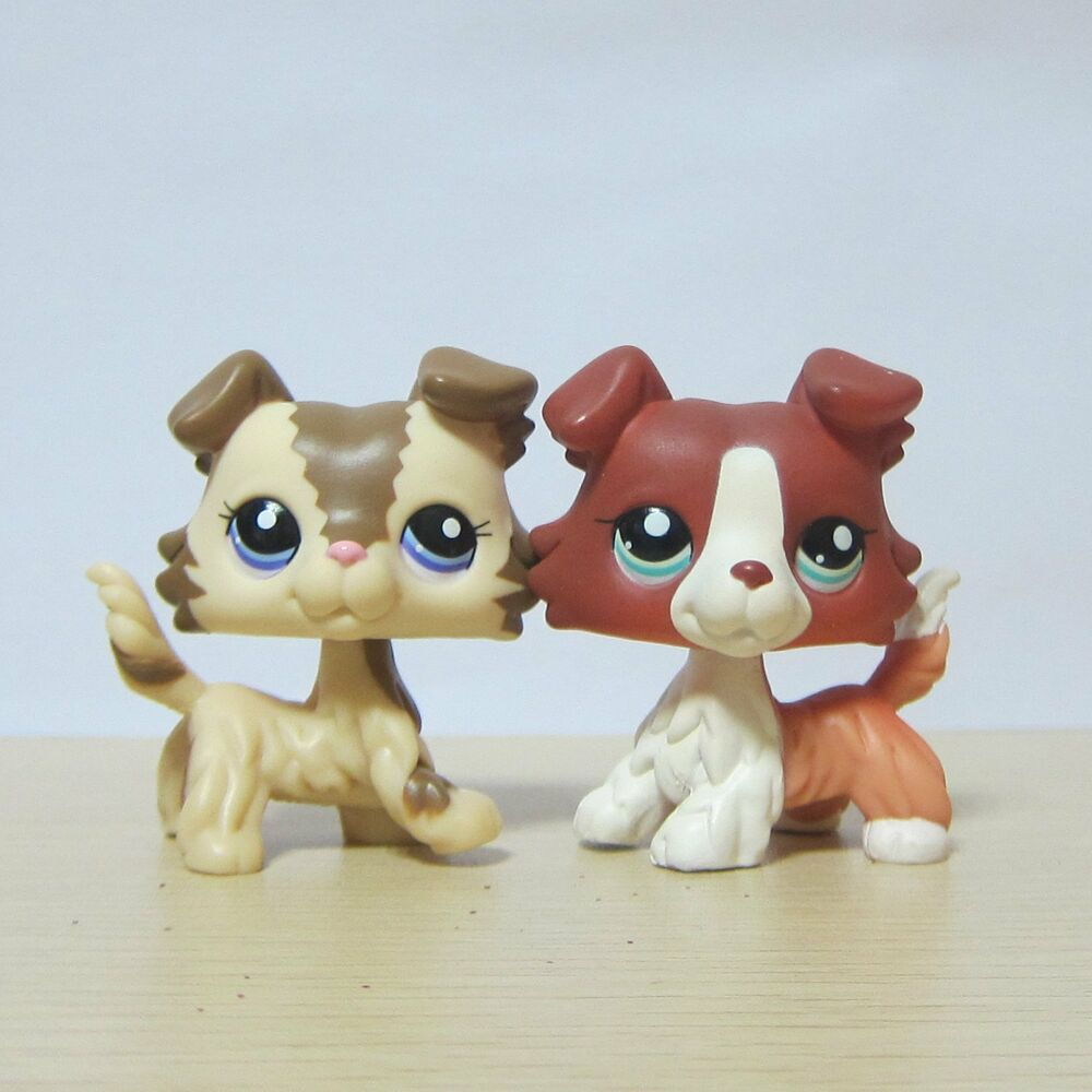 Give your little girl a toy that lets her imagination soar with the Blythe Littlest Pet Shop Pet Jet. This pet shop comes with a Blythe doll, pet bulldog, plane, and many other accessories for plenty of creative play.