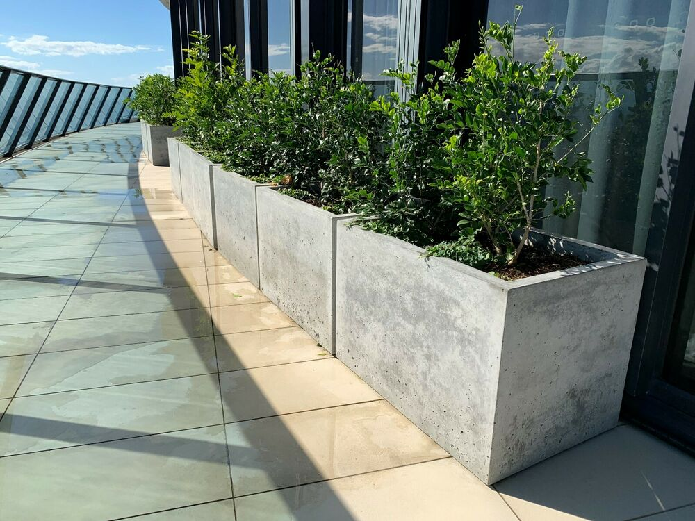 Diy Concrete Planter Box: Concrete Planter Box, Large Polished Patio Trough, Outdoor