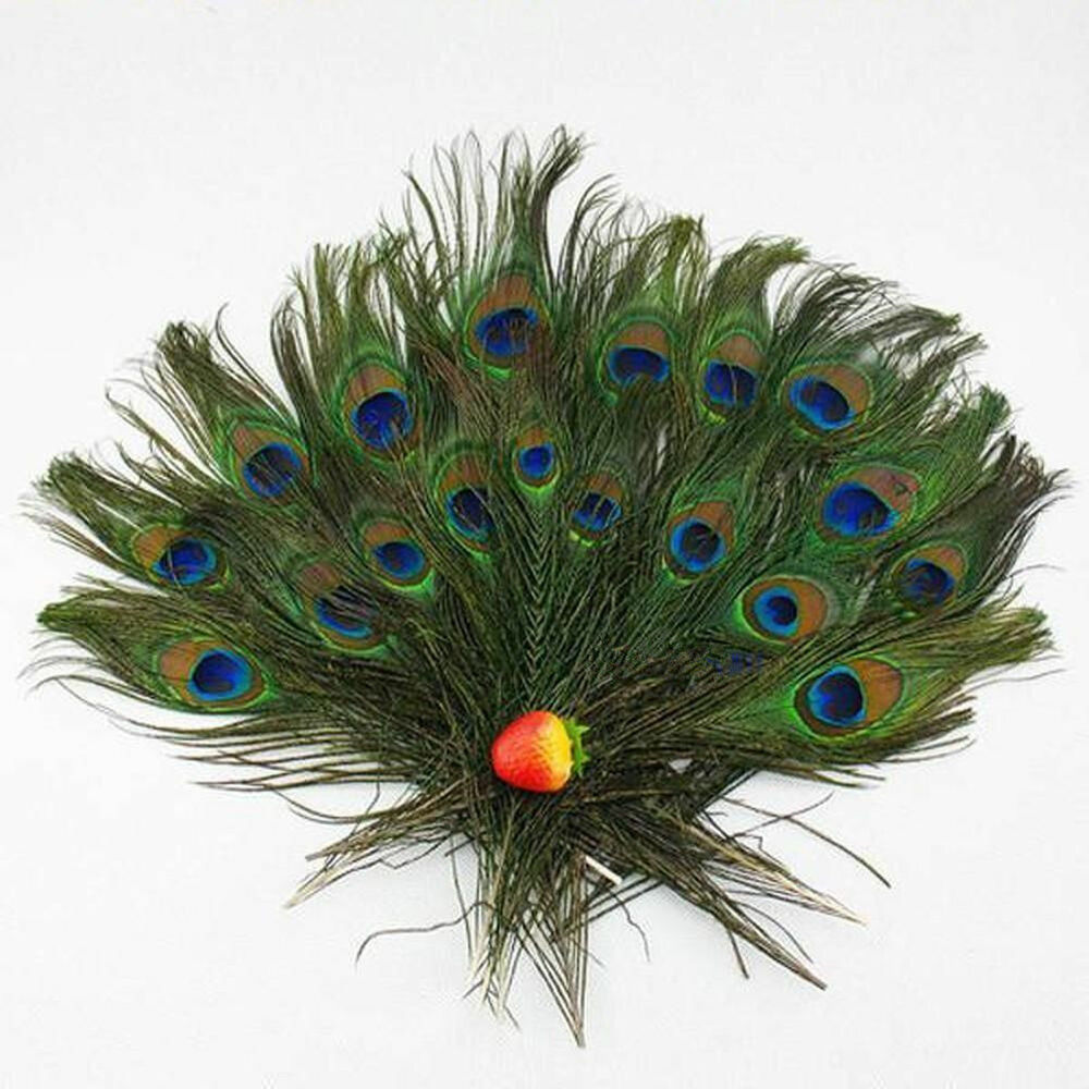 Peacock Feathers 50 Small Natural Peacock Tail Eye ...