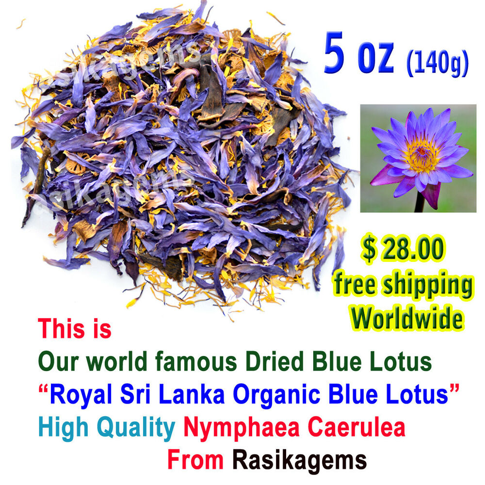 Dried blue lotus flowers blue lily nymphaea caerulea nuciferine dried blue lotus flowers blue lily nymphaea caerulea nuciferine 5 oz 33 ebay izmirmasajfo