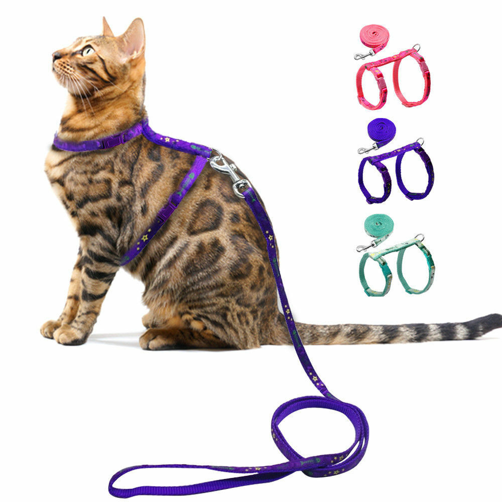 cat walking harness small dog puppy nylon kitten harness with leash adjustable ebay. Black Bedroom Furniture Sets. Home Design Ideas