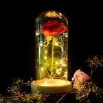 Beauty And The Beast Red Rose Glass Dome Valentine's Gifts Flower Lamp Light