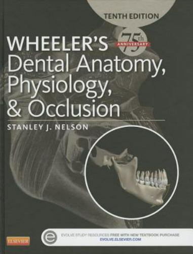 Wheelers Dental Anatomy Physiology And Occlusion 10th Intl
