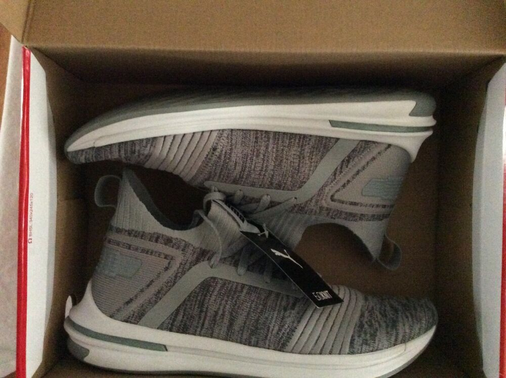 Details about Men s Gray PUMA Ignite EVOKNIT 555684b38