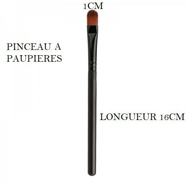 PINCEAUX A PAUPIERES FARD OMBRE A PAUPIERE ACCESSOIRE MAQUILLAGE MAKE UP  PIN800