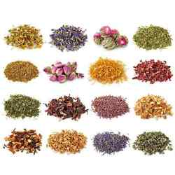 USDA ALL ORGANIC Dry herbs  - all 16 OUNCE size Starwest Botanicals FREE SHIP