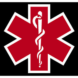Red Reflective Vinyl Star Of Life Car or Fire Helmet Decal EMT multiple sizes