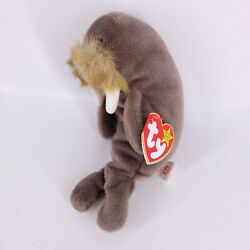 Ty The Beanie Babies Collection Jolly the Walrus Style 4082 DOB December 2, 1996