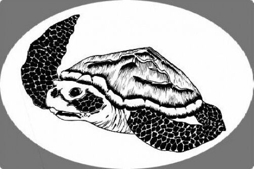 Sea Turtle Static Cling Etched Glass Window Decal Ebay